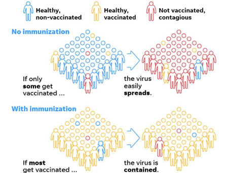 Herd Immunity: It May Not Mean What You Think It Means