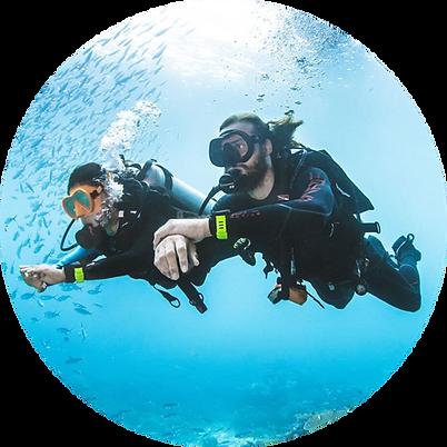 scuba-divers-circle.png