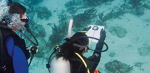 underwater-navigation.jpg