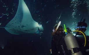 Night Diving Specialty.jpg