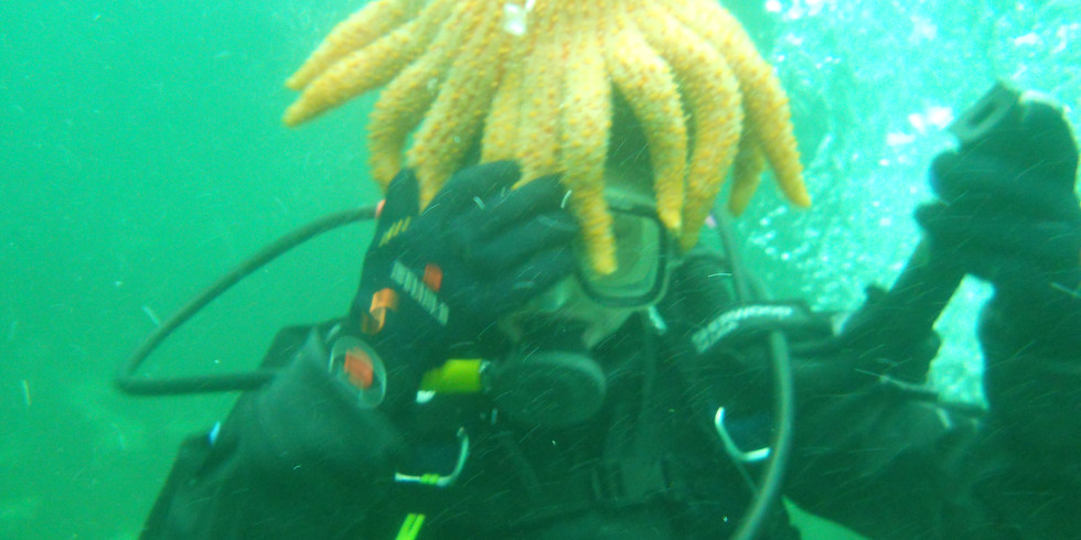 PADI   OPEN WATER DIVING COURSE   Aug 28 - 30   $150-$250
