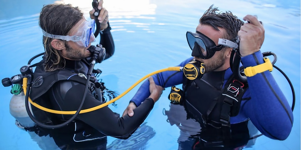PADI | OPEN WATER DIVING COURSE | Aug 14 - 16 | $600   *$255 Deposit Required