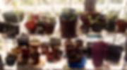 78918069_1798772460266976_1801654238535745536_n(1)_edited.jpg