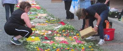 Des bénévoles participent à la jonchée fleurie.