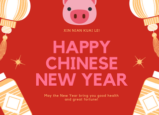 Happy Piggy Year!!