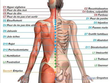 Que raconte votre dos quand il parle ?
