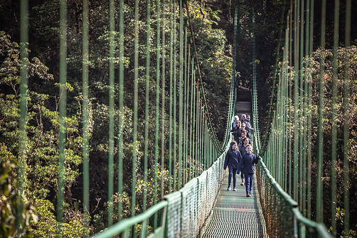 Costa Rica Monteverde Skywalk Suspension