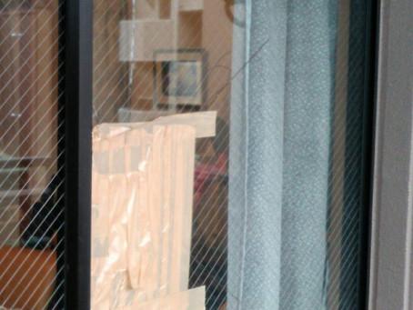 長久手市 ガラス 割れかえ 網入りガラス
