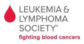 Leukimia.jpg
