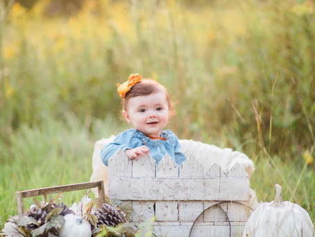 Fall Minis Sessions