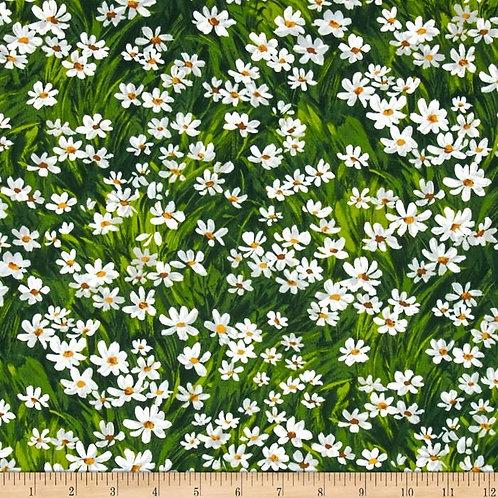 Meadow Daisy- Michael Miller Fabrics