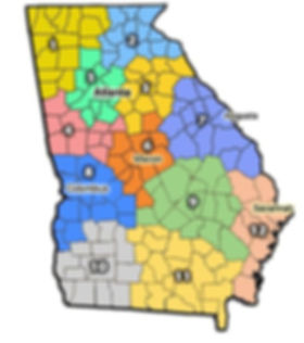 Georiga State map.JPG