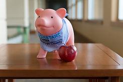 2019 Penny the Pig-8.jpg