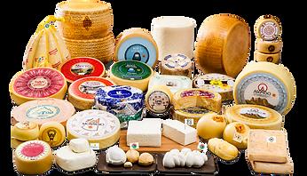 formaggi italiani.png