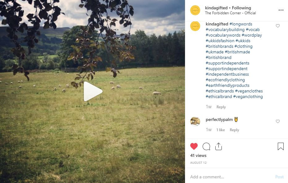 Screenshot of KindaGifted instagram showing video of field in yorkshire to represent content marketing