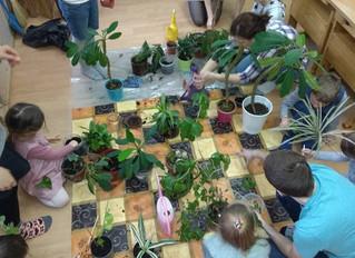 А сегодня мы узнали для чего нам нужны комнатные растения! И растения на нашей планете вообще :) и т