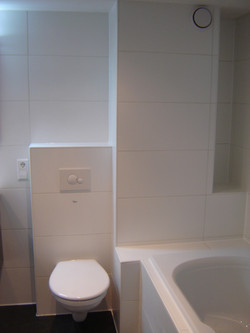 Toilet combi