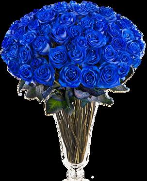 55 Синих роз