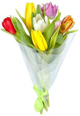 7 Тюльпанов