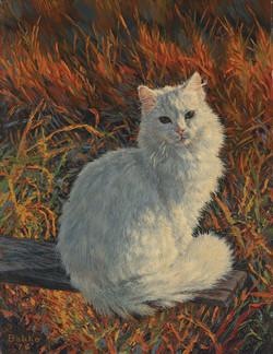 White Cat In Autumn Setting