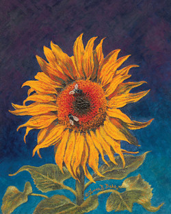 Sunflower - To Vincent from James