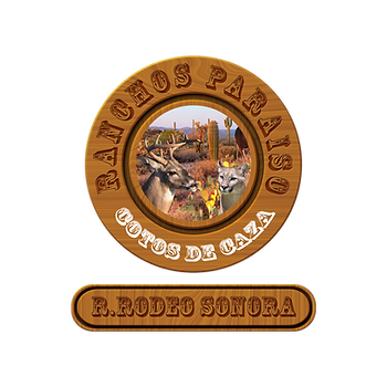 R.RODEO SONORA.png