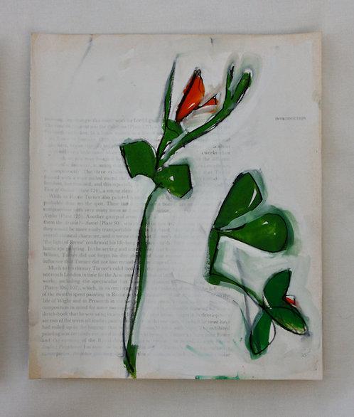 Turner book Pea (framed)