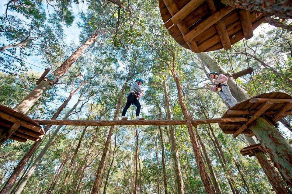 http://www.urban-jungle.net.au/
