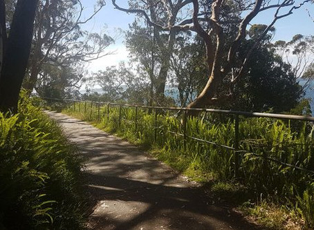 A walk to Bagnalls Beach from Nelson Bay