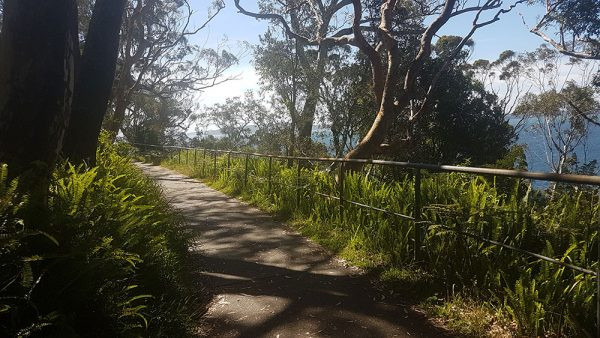 Bay Escapes - Walk from Nelson Bay to Dutchies Beach