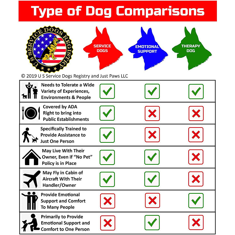emotional support certificates dog dogs