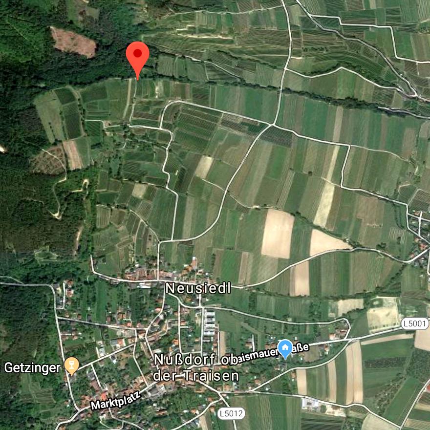 StLaurent Hochschopf1.png