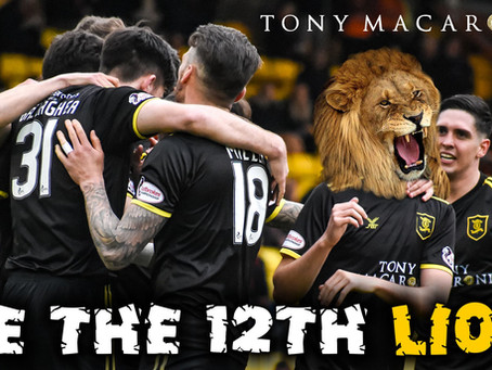 The Livi Lions Rollercoaster