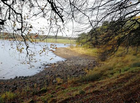 A walk around Hillend Loch, Caldercruix