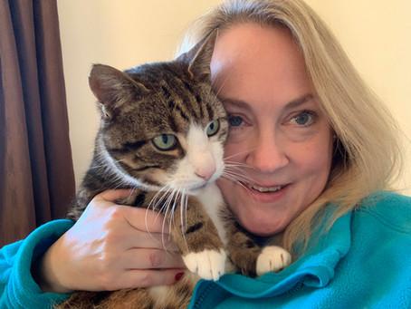 Allison Poulter, Cat Sitter