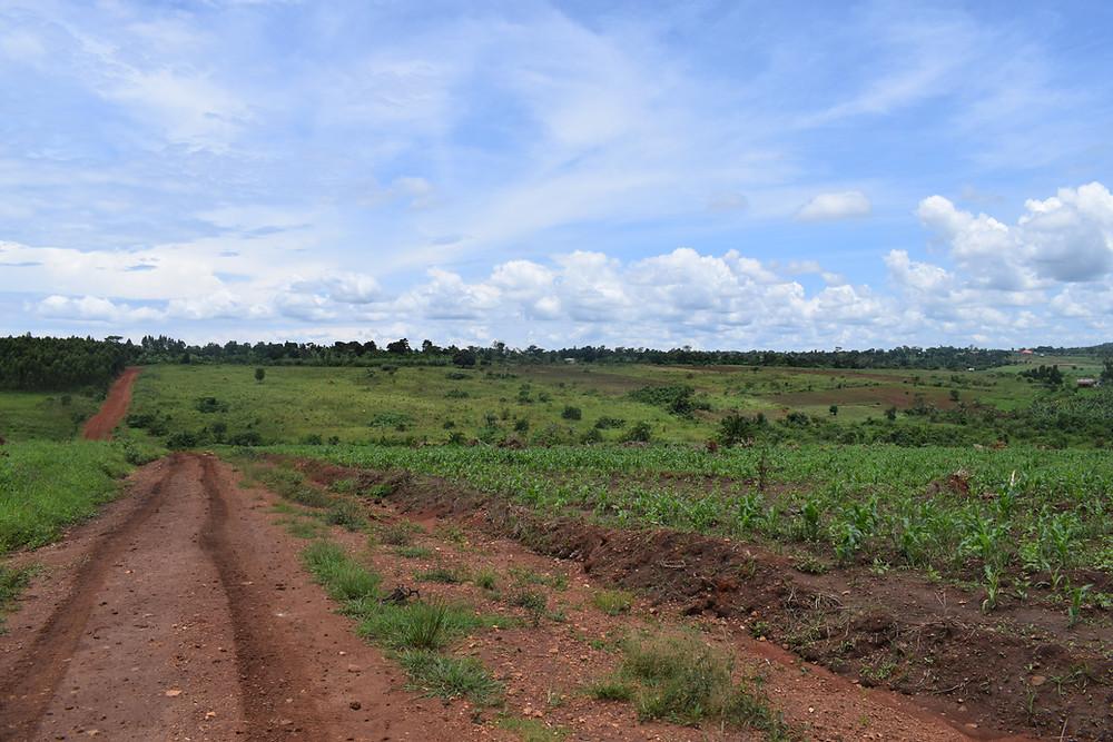 Matugga land in Uganda