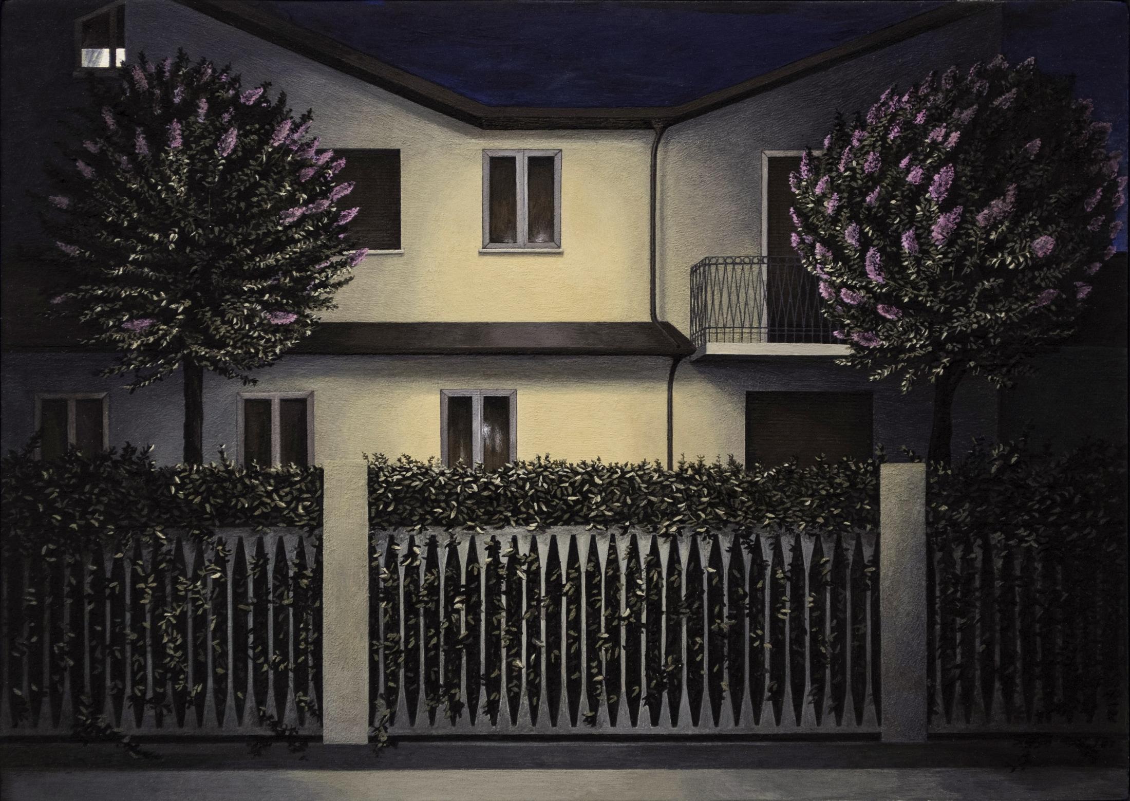 10_ Casa e Lagerstroemie di notte, tempe