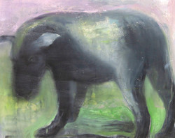 Cane di Daido, 40 x 50 cm