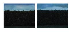 08_L'erba del vicino_I, dittico, tempera