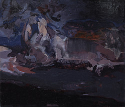 Animale notturno