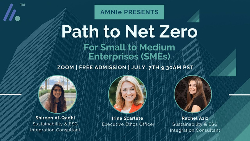 Path to Net Zero For Small to Medium Enterprises (SMEs)