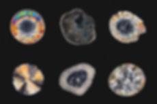 Top: MDMA, LSD, GHB; Bottom: DMT, Amphetamine, 2CB