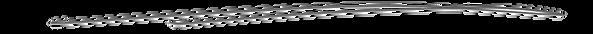 divider-line_transparency.png
