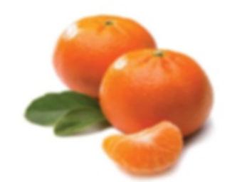 Mandarines Agrumentina.jpg