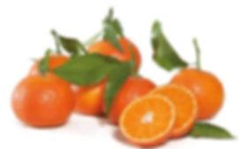 Mandarine oronules.JPG