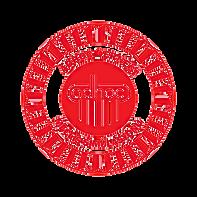ADHOC Ms logo