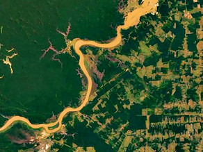 Fakegeo: How to Lie with Satellite Images
