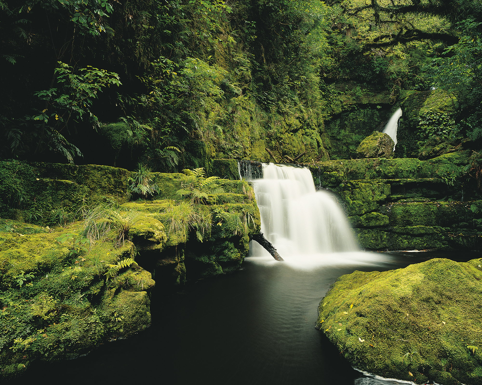 Lower McLean Falls, Catlins