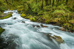 Marian Creek, Fiordland NP