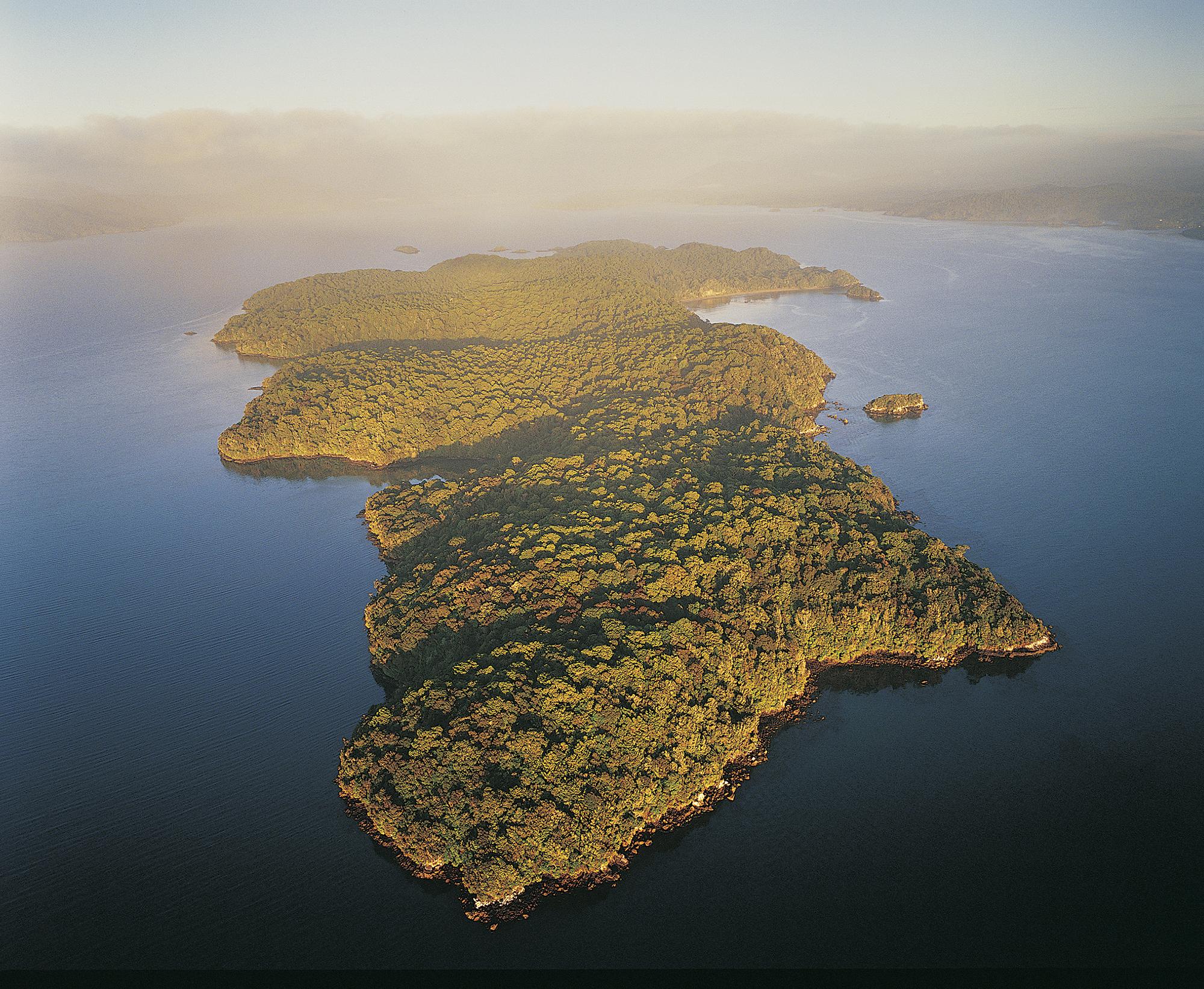 Ulva Island